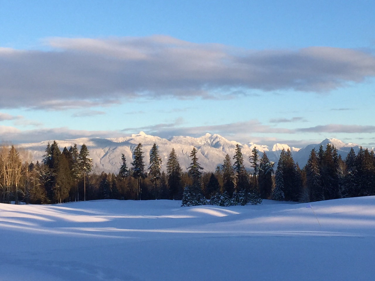 Snow covered golf course in Langley, BC
