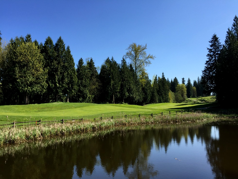 water policy - view of the pond in the golf course